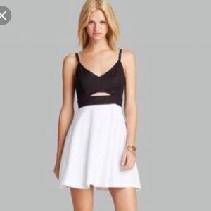NWT BB Dakota black and white dress